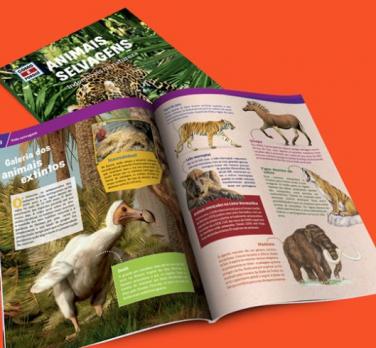 Animais Selvagens - Indomáveis na Natureza